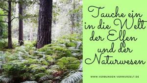 """Über die Wunder der Natur: """"Elfen sprechen zu dir"""" gibt dir neue Impulse für dein Leben"""